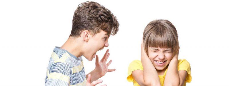 La agresividad en la infancia